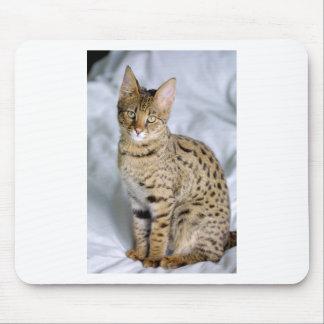 Beautiful Bengal Cute Cat Face Mousepad
