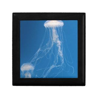 Beautiful Blue Jellyfish Small Square Gift Box