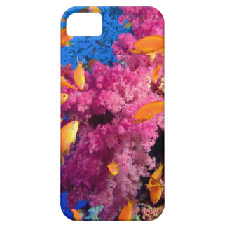 Beautiful Coral Reef Naturescape iPhone 5 Case