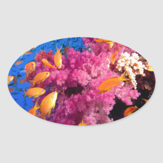 Beautiful Coral Reef Naturescape Oval Sticker