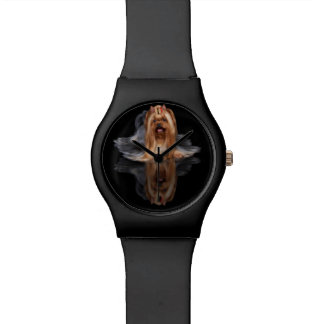 Beautiful dog on black reflecting background watch