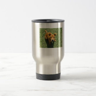 Beautiful Female Puppy PitBull Chow Mix Stainless Steel Travel Mug
