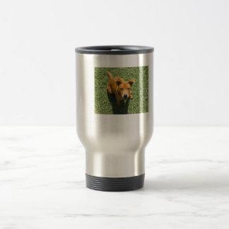 Beautiful Female Puppy PitBull Chow Mix Travel Mug