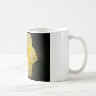 Beautiful flower products coffee mugs