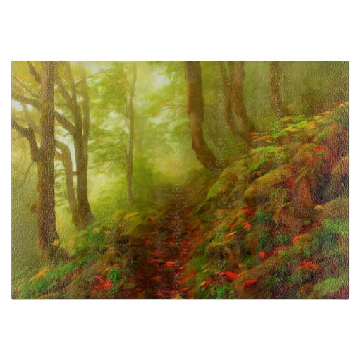 Beautiful forest with fog between trees cutting boards