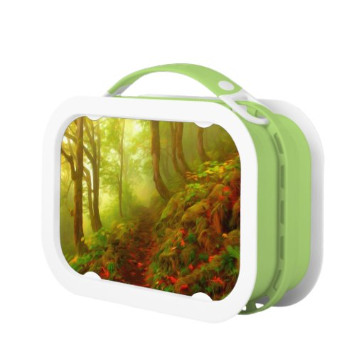 Beautiful forest with fog between trees lunch boxes