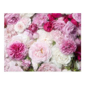 Beautiful,fresh,pink,white,roses,pattern,vivid,fun Postcard