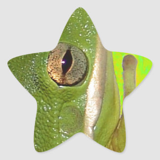 Beautiful green tree frog giviing the peace sign. star sticker