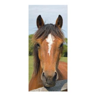 Beautiful horse head bookmark, gift idea rack card template