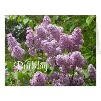 Beautiful Lilac Bush Big Greeting Card