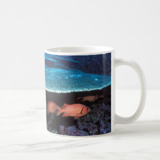 Beautiful mug with soldier fish and coral design
