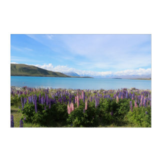 Beautiful New Zealand - Lake Tekapo Landscape Acrylic Print