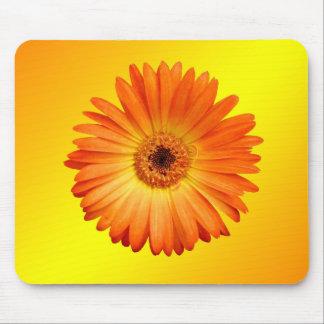 Beautiful Orange and Yellow Gerbera Daisy Mouse Pad