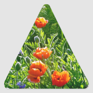 Beautiful orange poppy flower print triangle sticker