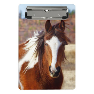 Beautiful Paint Horse Mini Clipboard