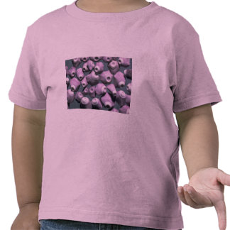 Beautiful Pebbles from Pieces of sea urchins T-shirts