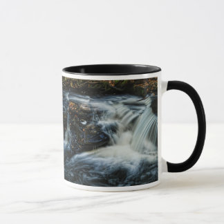Beautiful Pocono Waterfall Mug