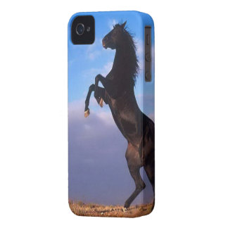 Beautiful rearing black horse with blue sky photo iPhone 4 Case-Mate case
