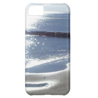 Beautiful Reflections iPhone 5C Case
