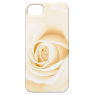 Beautiful soft cream colored rose flower floral iPhone 5 case