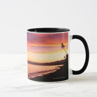 Beautiful sunset at the beach mug