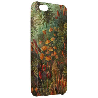 Beautiful Vintage Flowers iPhone 5C Cover
