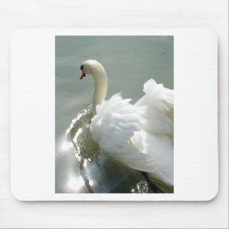 Beautiful white swan mouse pad