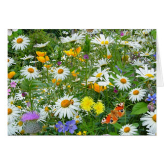 Beautiful Wildflower and Butterfly Meadow Note Card