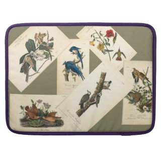 Beautiful Women's Vintage Nature Computer Cover