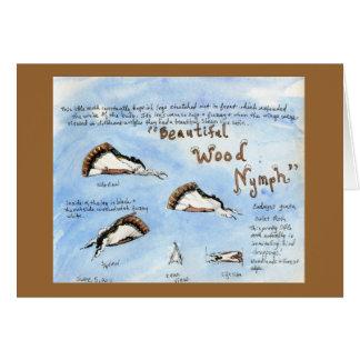 Beautiful Wood-nymph Moth watercolor Card
