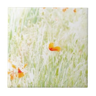 Beautifully tender colors of a flowering meadow small square tile