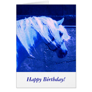 Beauty in Blue - Andalusian Stallion Card