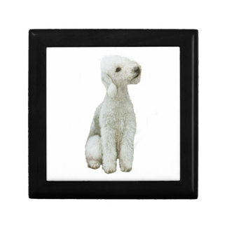 Bedlington Terrier (A) Gift Box