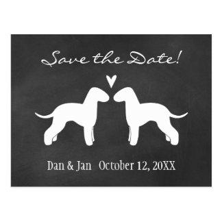 Bedlington Terriers Wedding Save the Date Postcard