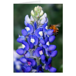 Bee & Bluebonnet Greeting Card