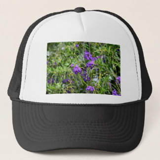 BEE ON FLOWER RURAL QUEENSLAND AUSTRALIA TRUCKER HAT
