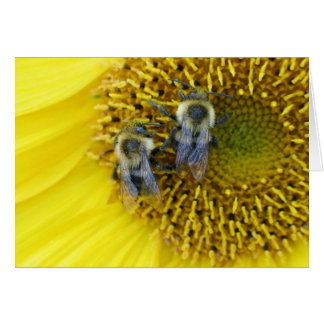 Bees Greeting Card With Envelope