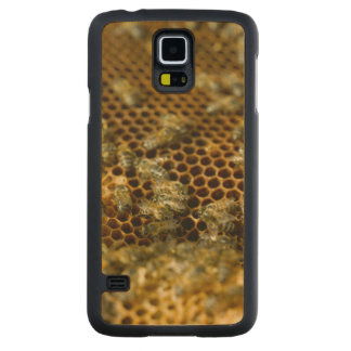 Bees In Hive, Western Cape, South Africa Carved Maple Galaxy S5 Case