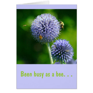 "Bees On Purple Allium,(Photog)""Been busy as a bee"" Card"