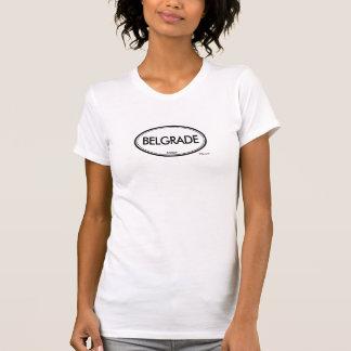 Belgrade, Serbia T-Shirt