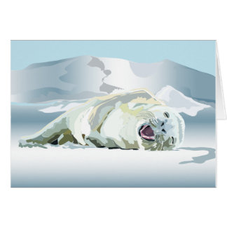 """Belly Laughing Seal 5""""x7"""" card & envelope"""