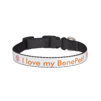 BenePet Dog Collar