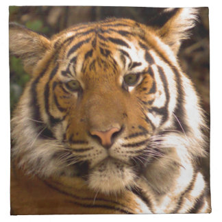 Bengal Tiger in Thought Napkin