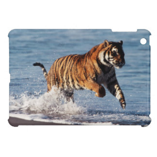 Bengal Tiger (Panthera Tigris) iPad Mini Covers