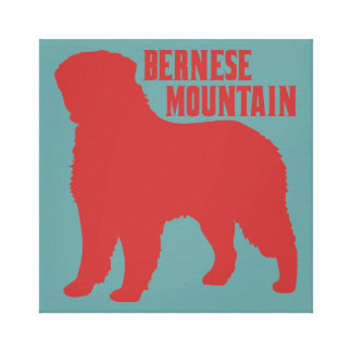 Bernese Mountain Canvas Print