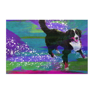 Bernese Mountain Dog Acrylic Wall Art