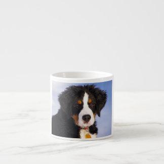 Bernese Mountain Dog - Cute Puppy Photo Espresso Cup