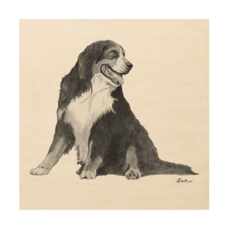 Bernese Mountain Dog Drawing Wood Wall Decor