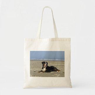 bernese-mountain-dog-layin on beach.png