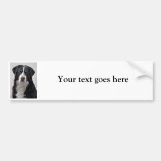 Bernese Mountain dog photo custom bumper sticker